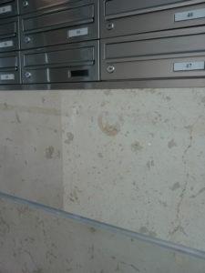 Hol wejściowy - na ścianie marmur Morawica, widoczny amonit - skamieniała muszla skorupiaka